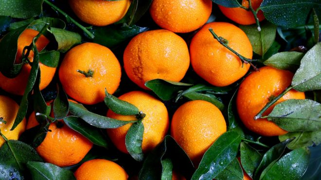 All About Oranges