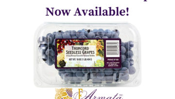 Thomcord Seedless Grapes - Currently Offered At E.Armata