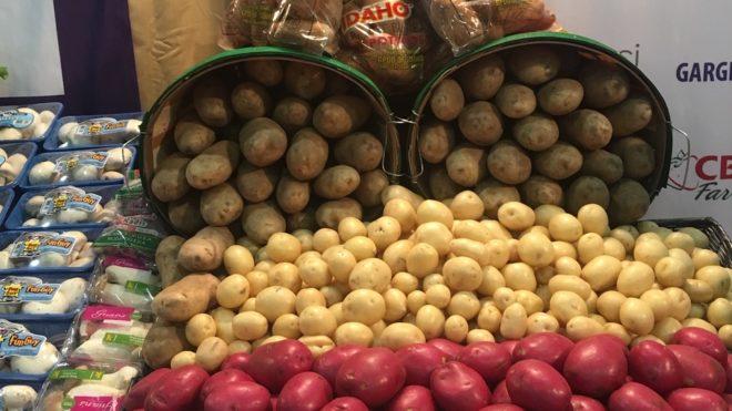 Our Potato Assortment