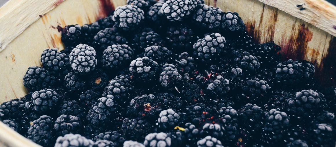 Tasty Fall Berry Recipes You Should Try